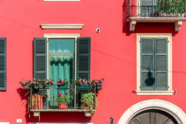 cvece za balkon