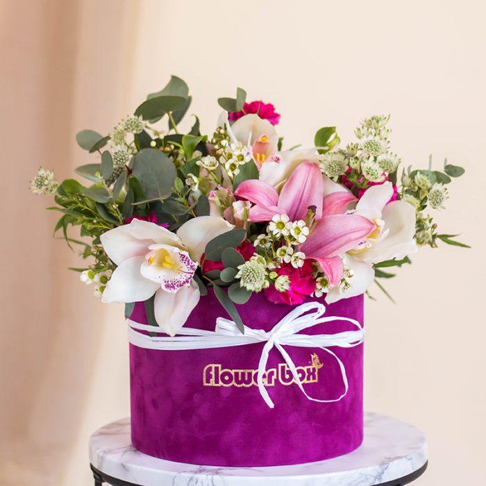 Orhideja u kutiji