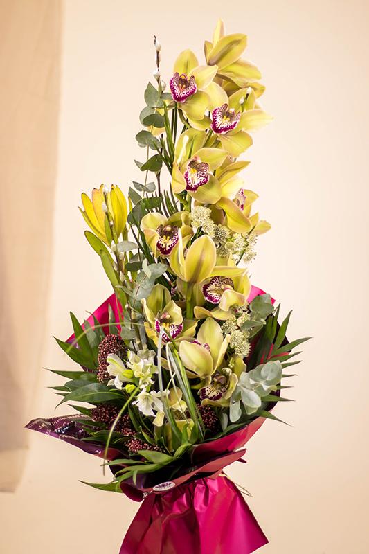 Orhideja grana